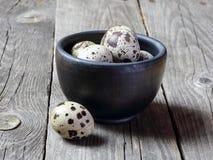 Uova di quaglia in una ciotola Fotografia Stock