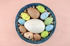 Uova di quaglia variopinte di Pasqua su un pallido - fondo rosa Fotografia Stock Libera da Diritti
