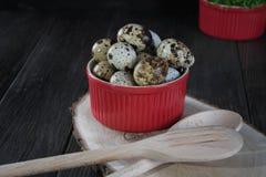Uova di quaglia in vaso rosso su fondo scuro Fotografia Stock