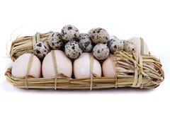 Uova di quaglie e del pollo Immagine Stock Libera da Diritti
