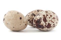 Uova di quaglie isolate su priorità bassa bianca Fotografia Stock Libera da Diritti