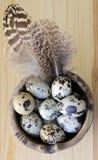 Uova macchiate Fotografie Stock
