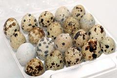 Uova di quaglie su bianco Fotografie Stock