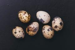 Uova di quaglie su fondo nero Fotografie Stock