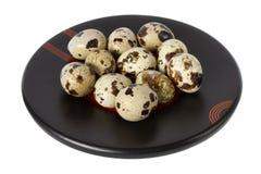 Uova di quaglie su una zolla isolata su bianco Immagine Stock