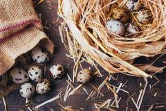 Uova di quaglie sulla tavola di legno Fotografie Stock Libere da Diritti