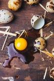 Uova di quaglie sulla tavola di legno Fotografia Stock