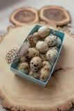 Uova di quaglie in una casella Fotografia Stock