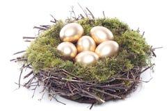 Uova dorate nel nido dell'uccello sopra bianco Fotografia Stock