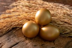 Uova dorate su un fondo di legno rustico Immagine Stock