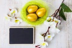 Uova dorate in un nido Immagini Stock