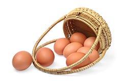 Uova e cestino immagini stock