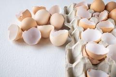Uova e metà di shkarlupa delle uova in un vassoio fotografie stock