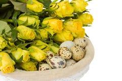 Uova e rose di quaglie per pasqua Fotografia Stock