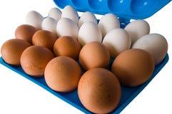 Uova ed il contenitore blu scuro. Fotografie Stock