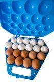 Uova ed il contenitore blu scuro. Fotografia Stock Libera da Diritti