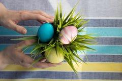 Uova in fiore Fotografia Stock