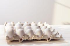 Uova, fondo bianco, tavola, imballante per le uova fatte del cardbo Fotografie Stock