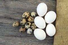 uova a forma di fiore del pollo ed uova di quaglia Le uova bianche del pollo e le uova di quaglia stanno parallelamente su un pav Fotografia Stock