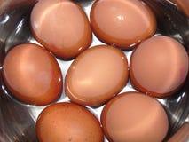 Uova fresche in acqua Fotografia Stock