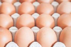 Uova fresche alte chiuse del pollo Fotografia Stock Libera da Diritti