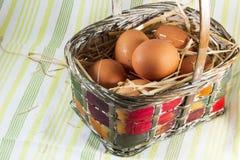 Uova fresche in cestino immagini stock