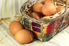 Uova fresche in cestino fotografia stock