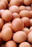 Uova fresche da vendere ad un mercato Fotografie Stock