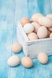 Uova fresche del pollo dell'azienda agricola in scatola Fotografia Stock Libera da Diritti