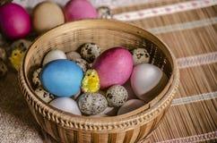 Uova fresche del pollo ed uova di quaglia con le uova di Pasqua dipinte e un pollo di giallo del giocattolo in un canestro della  Fotografia Stock