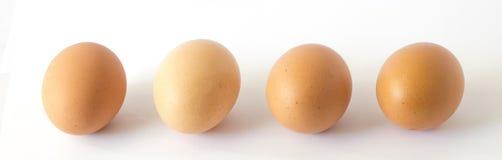 Uova fresche del pollo su fondo bianco fotografia stock