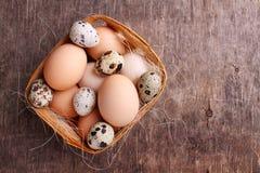 Uova fresche dell'agricoltore del pollo e della quaglia Immagini Stock Libere da Diritti