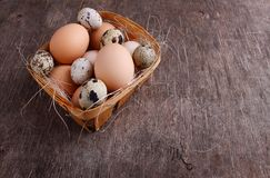 Uova fresche dell'agricoltore del pollo e della quaglia Fotografia Stock
