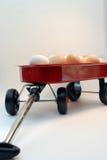 Uova fresche dell'azienda agricola Immagini Stock Libere da Diritti