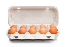 Uova fresche dell'azienda agricola cruda in vassoio del Libro Bianco Fotografia Stock Libera da Diritti