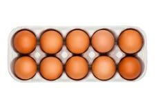 Uova fresche dell'azienda agricola cruda in vassoio del Libro Bianco Immagini Stock Libere da Diritti