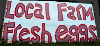 Uova fresche dell'azienda agricola locale Fotografia Stock Libera da Diritti