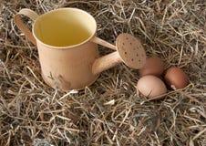 Uova fresche nel fieno Immagine Stock