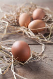 Uova fresche su paglia di riso all'azienda agricola del paese Fotografia Stock