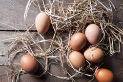 Uova fresche su paglia di riso all'azienda agricola del paese Fotografia Stock Libera da Diritti
