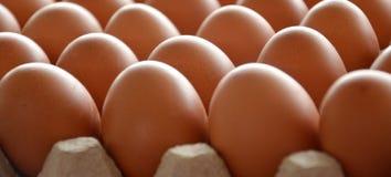 Uova fresche in un mercato Fotografia Stock Libera da Diritti