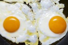 Uova fritte Immagine Stock