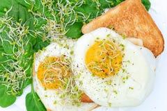 Uova fritte su pane tostato e su spinaci immagini stock