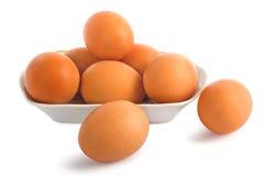 Uova isolate su priorità bassa bianca fotografia stock