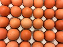 Uova naturali fresche del pollo in imballaggio del cartone Fotografie Stock Libere da Diritti