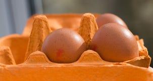 Uova nel canestro Fotografia Stock