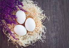 Uova nel nido Fotografia Stock Libera da Diritti
