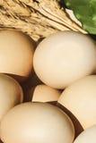 Uova nel quadrato di legno fotografie stock libere da diritti