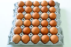 Uova nel vassoio & nel x28; Food& crudo x29; immagine stock