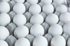 Uova nell'imballaggio Immagine Stock Libera da Diritti